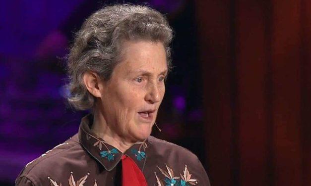 Minerva Foods recebe Temple Grandin em Barretos, SP