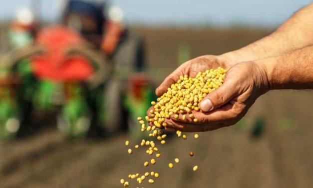 Empresas do agronegócio se unem em campanha para uso do  tratamento industrial de sementes