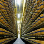 Vigor se prepara para entrar no segmento de queijos processados fatiados no mercado de fast food