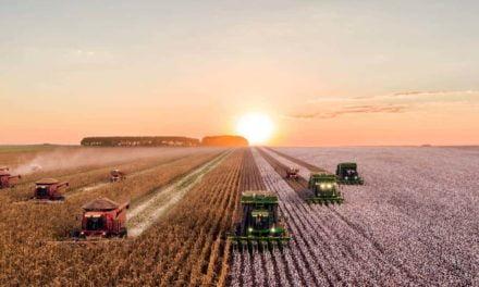 Produção sustentável de alimentos sim. Incendiários não