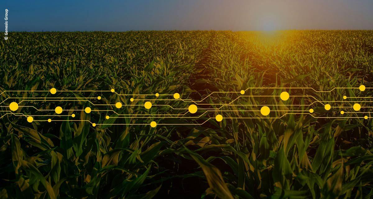 Genesis Group inspeciona mais de 72 milhões de toneladas de grãos em 2019