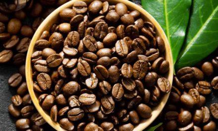 Exportações de café brasileiro atingem 3,4 milhões de sacas em outubro