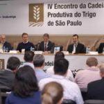 IV Encontro da Cadeia Produtiva do Trigo discute cenário nacional e mundial para o grão