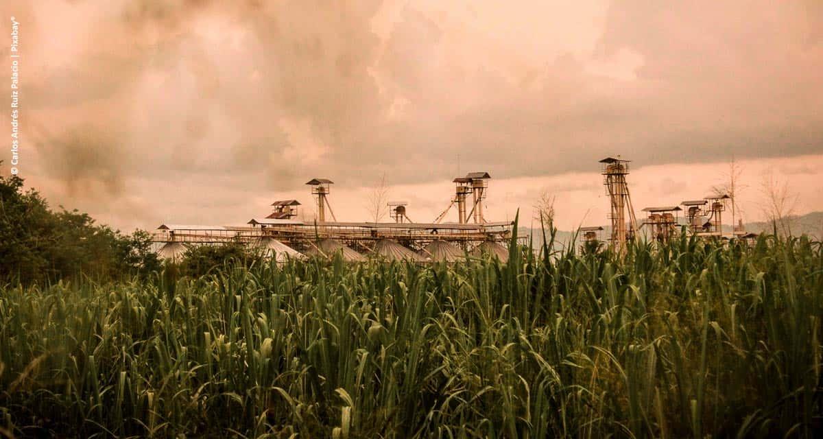 BP e Bunge concluem a formação da joint venture  BP Bunge Bioenergia no Brasil