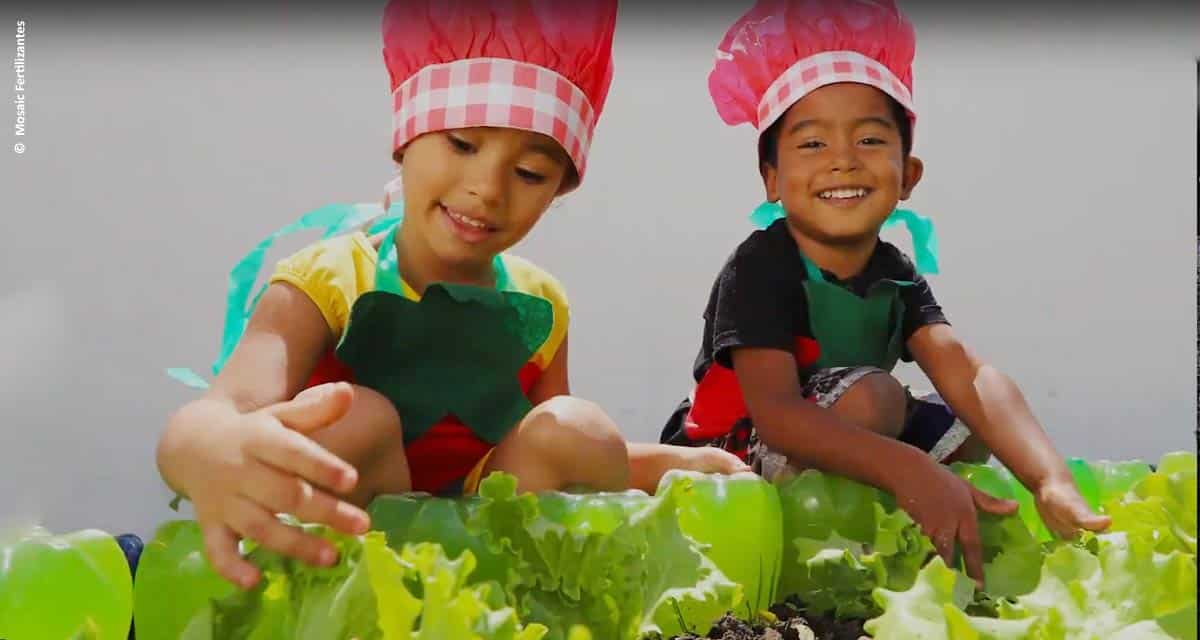Projetos socioambientais da Mosaic Fertilizantes impactam cerca de 40 mil pessoas em 2019