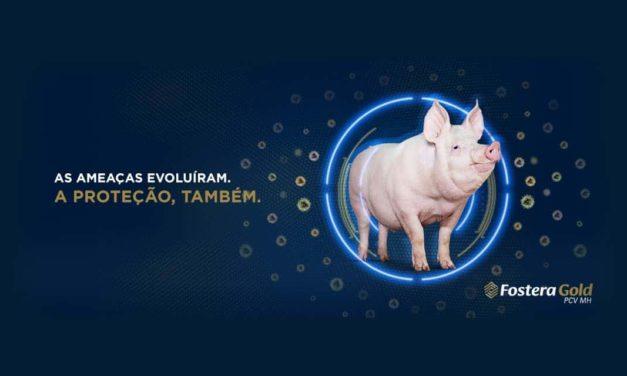 A mais ampla proteção contra o circovírus suíno
