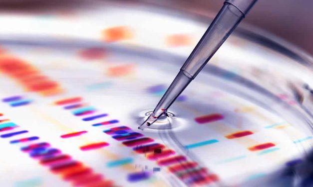 Bayer impulsiona inovação e sustentabilidade agrícola com investimentos na ordem de € 2,3 bi em pesquisa