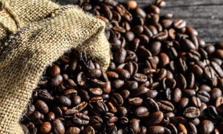 Exportações de café do Brasil atingem 3,2 milhões de sacas em janeiro