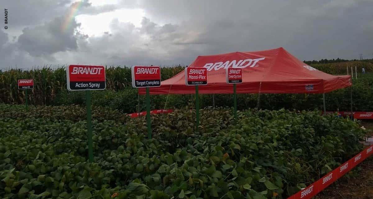 BRANDT mantém oferta de insumos para produção de alimentos