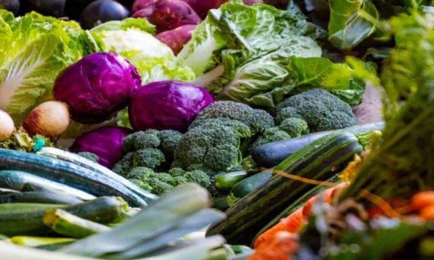 Secretaria de Agricultura e Abastecimento de SP promove alimentação saudável durante quarentena