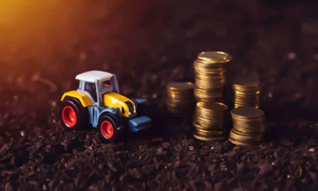 Agricultores familiares receberão benefício do Garantia-Safra