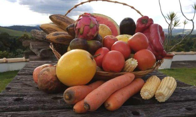 GenesisGroup realiza a primeira certificação de produtos orgânicos em propriedade rural