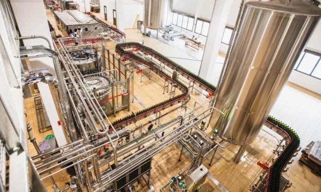 Vinícola Aurora retoma produção industrial