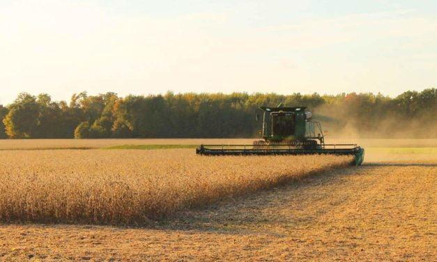 BB Seguros indeniza produtores rurais que tiveram perdas na safra 2019/2020