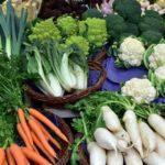 Startup gaúcha desenvolve plataforma para ajudar pequenos produtores a venderem seus alimentos durante o Covid-19
