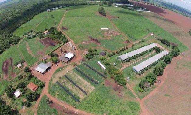 Troféu IILB  – Cobiça é bicampeã como Melhor Fazenda e Santa Helena ganha pela maior evolução