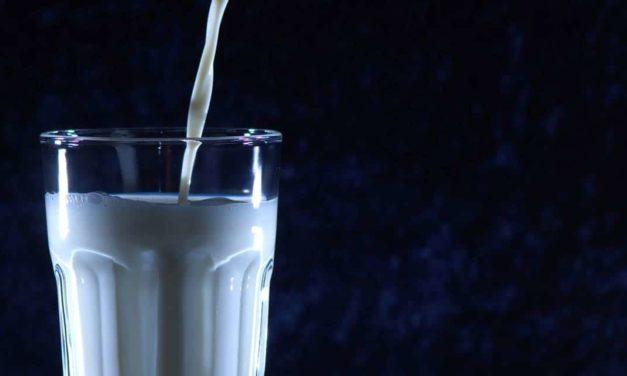 Abraleite atua com Poder Público para auxiliar a cadeia leiteira