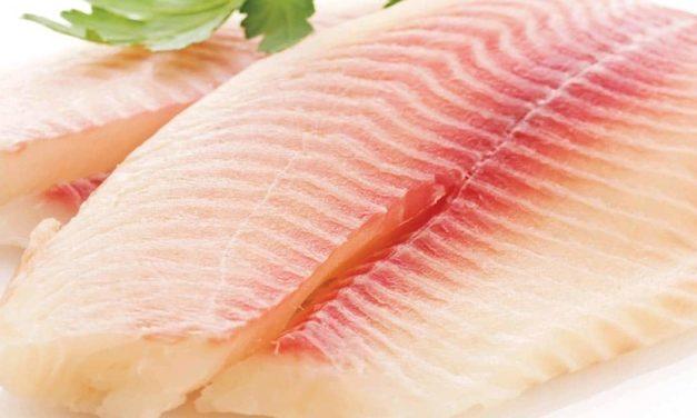 Peixe BR comemora habilitação de plantas para exportação de peixes de cultivo para a China