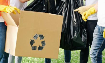 Programa de reciclagem da Agropalma une preservação ambiental e responsabilidade social com doação de resíduos