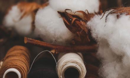 Milliken coloca no mercado brasileiro polímero colorido para sementes de algodão