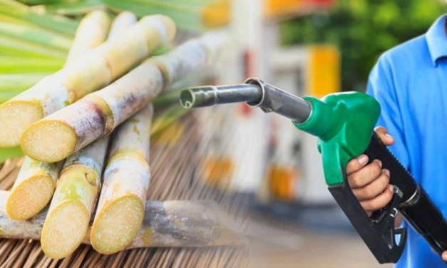 A principal variável agora é o consumo do etanol