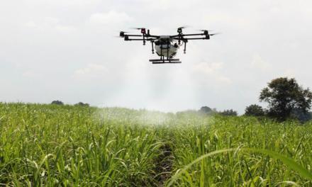 Agrotóxicos, drones e inteligência artificial: como esta combinação pode mudar nosso futuro?