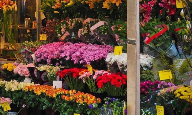 Floricultura brasileira amarga prejuízos por causa da pandemia