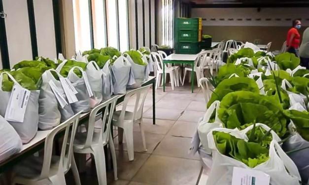Associação de pequenos agricultores agroecológicos obtém renda e consegue escoar parte da produção com entrega de cestas adquiridas pela Prefeitura de Cruzeiro