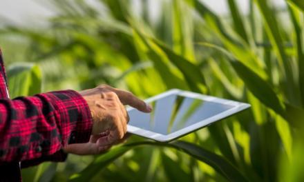 Pandemia vai transformar áreas do agro e acelerar digitalização de produtores