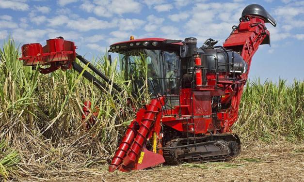 Colhedora de cana da Case IH é, mais uma vez, a mais lembrada pelo agricultor
