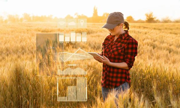 Os dados no agronegócio e a LGPD: como se preparar para a nova Lei