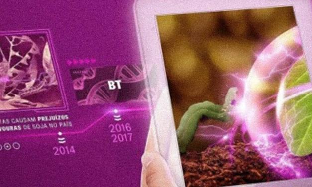 ADAMA lança Plethora, inseticida premium e multiculturas que atuará no controle do complexo de lagartas