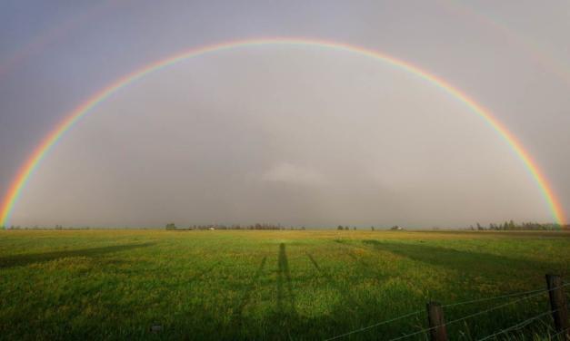 Para o infinito…e além! O reskilling no agro