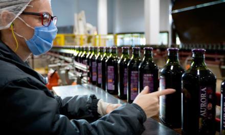 Vinícola Aurora amplia em 71,7% exportações para Ásia