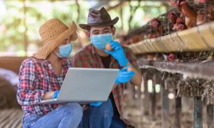 Com pandemia, agricultor brasileiro deve acelerar digitalização