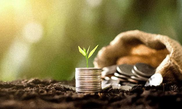 Faesp aprova Plano Safra, mas pede mais apoio a hortifrútis e setor sucroenergético