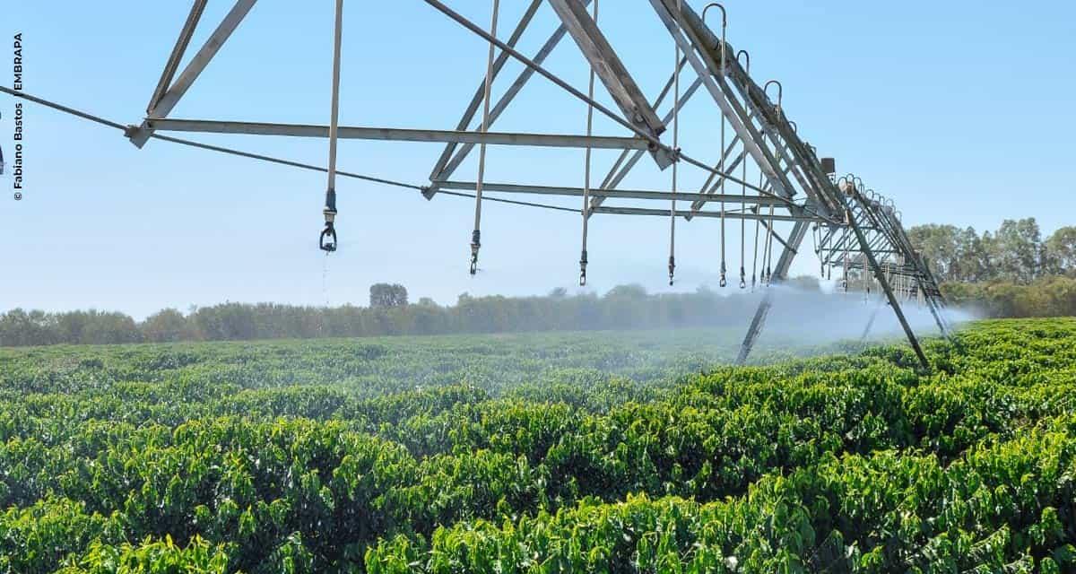 Mitos e Fatos na agricultura irrigada (Parte I)