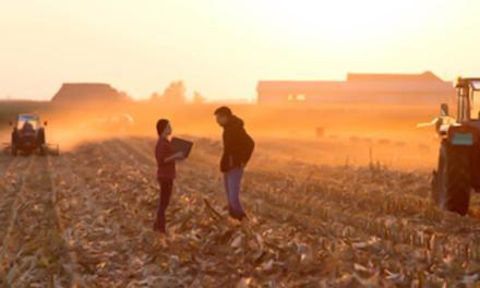 Os desafios da liderança jovem no agronegócio