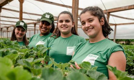 12 de junho – Dia Mundial contra o Trabalho Infantil: OIT reconhece ARISE como exemplo