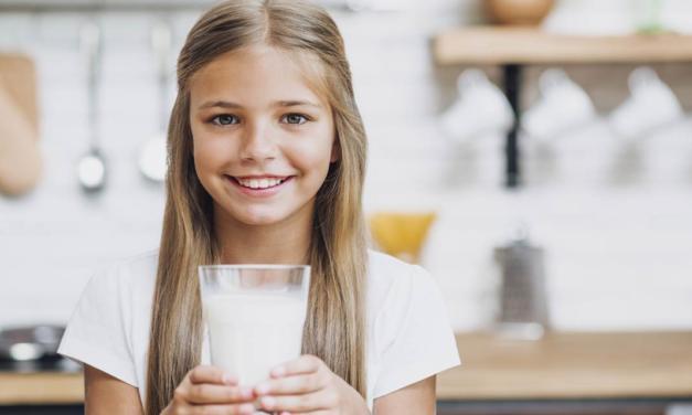 Brasil tem potencial para ser futuro maior exportador mundial de leite e derivados
