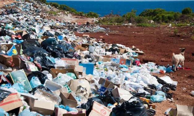 Signify foca em zerar o uso de plástico em todas as embalagens em 2021