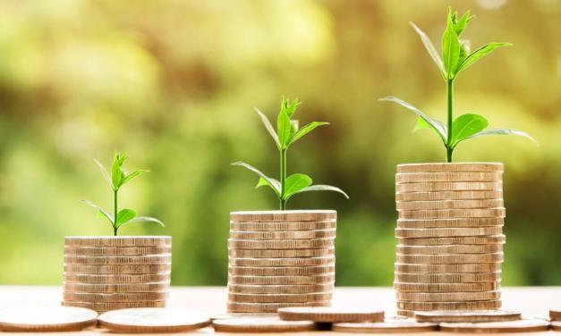Agronegócio desponta como o único setor em crescimento no País