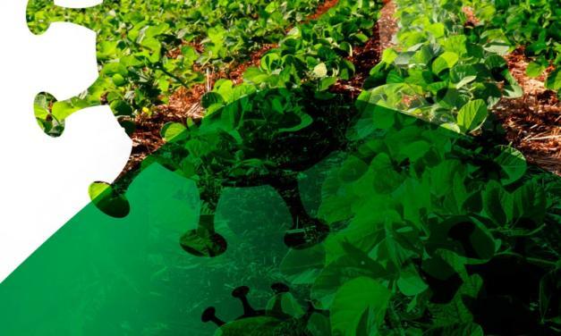 ABIOVE lança cartilha de prevenção à Covid-19 em propriedades rurais