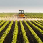Mercado de fertilizantes especiais apresenta expansão de 7,7% em 2019