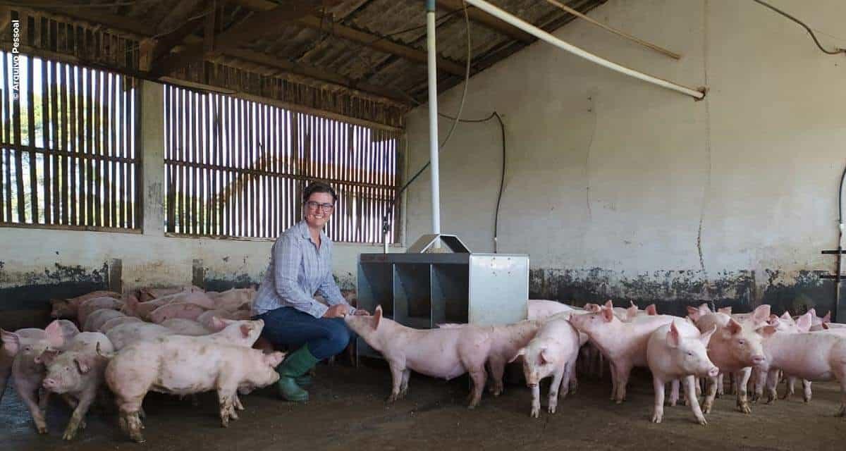 24 de Julho   Dia do Suinocultor: exportações crescem e produtores revelam perspectivas positivas