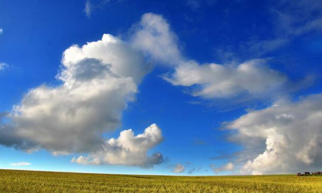 Agricultura de Baixo Carbono no radar do Governo Federal
