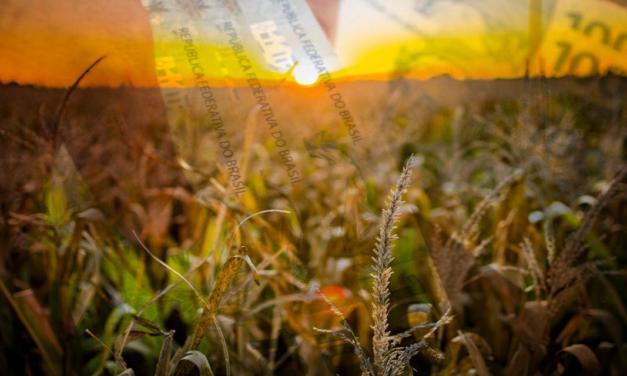 Bloomberg lança o primeiro guia do agronegócio