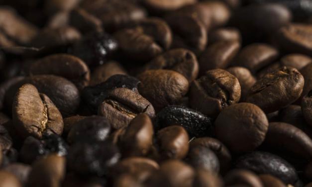 Brasil exporta 40 milhões de sacas de café no ano-safra 2019/20