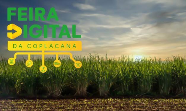 Feira Digital Coplacana: balcão de negócios com boas oportunidades