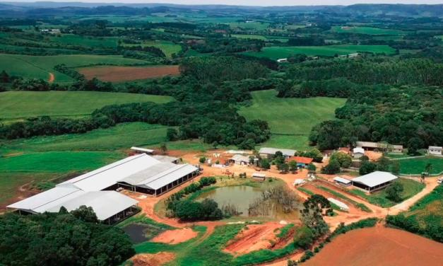 Estância Shalom apresenta case de alta produtividade baseado em plano de nutrição para bezerros